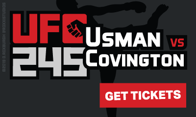 Ad Banner For Cheap UFC 245 Tickets